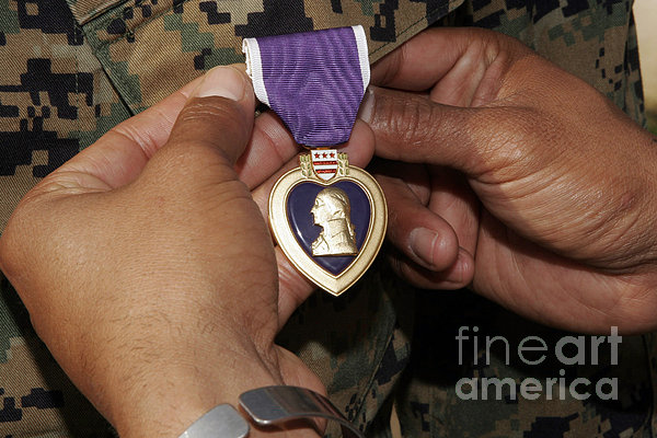 The Purple Heart Award Print by Stocktrek Images