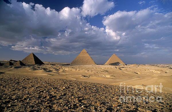 The Pyramids At Giza Print by Sami Sarkis