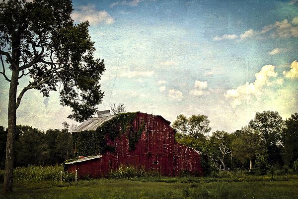 The Red Barn Print by Elizabeth Wilson