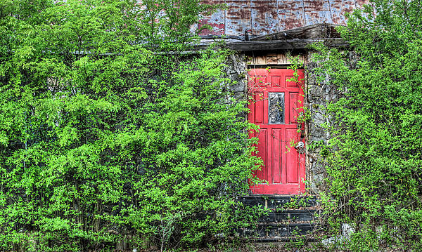 The Red Door Print by JC Findley