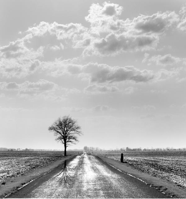 The Road To Infini Photograph  - The Road To Infini Fine Art Print