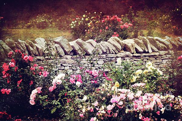 The Rose Garden Print by Stephanie Frey