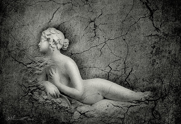 The Soul Of Stature Print by Svetlana Sewell