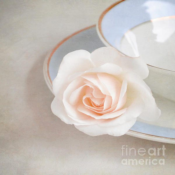 The Sweetest Rose Print by Lyn Randle