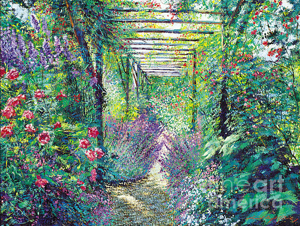 David Lloyd Glover - The Tangled Trellis