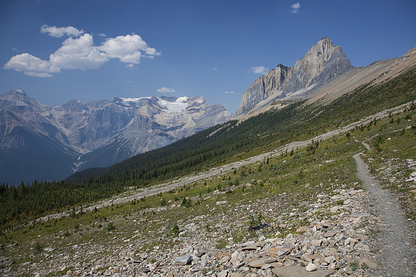 The Unesco Burgess Shale Fields Spread Print by Taylor S. Kennedy