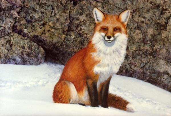 The Wait Red Fox Painting