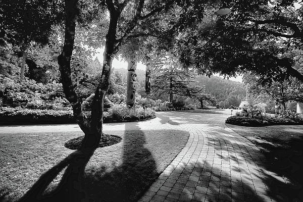 The Walkway Bw Print by Lawrence Christopher