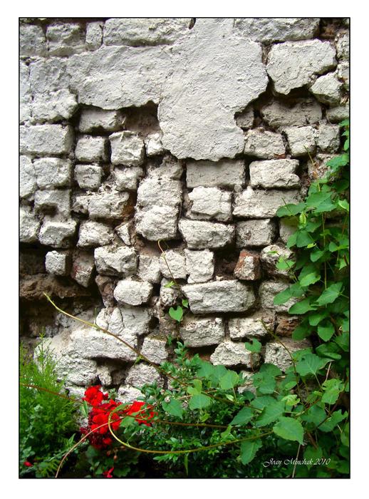 Joan  Minchak - The Wall