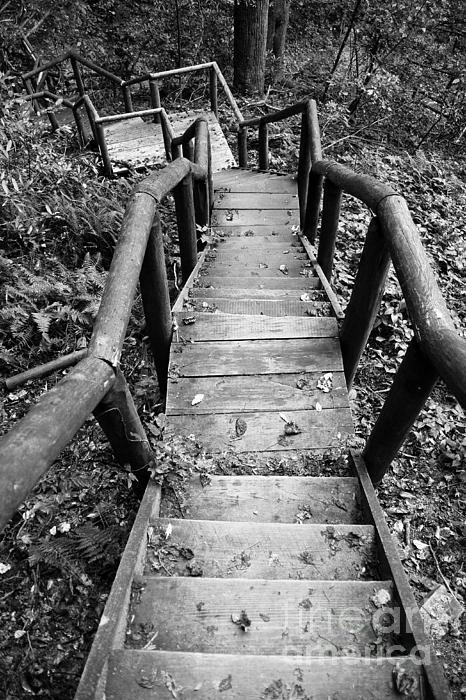 The Way Down Print by Olivier Steiner