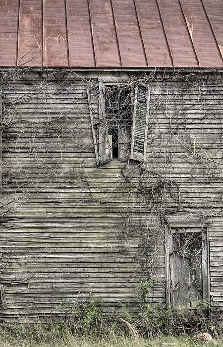 The Window Up Above Print by JC Findley