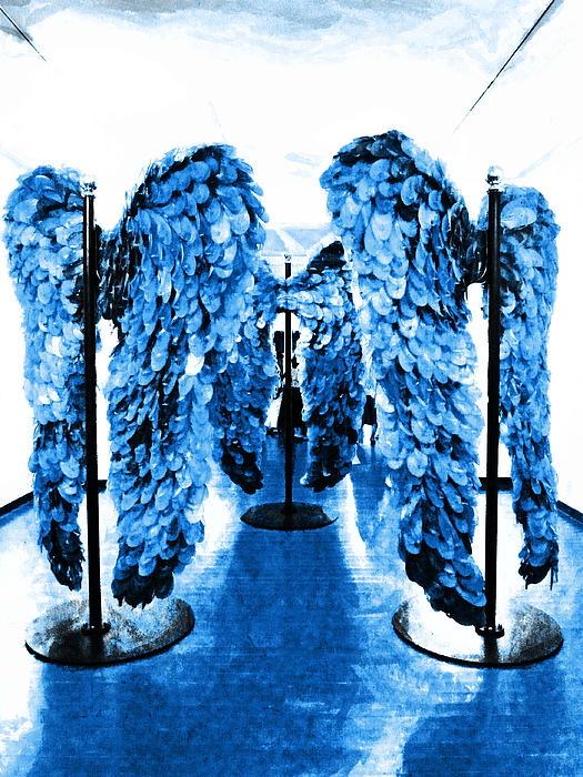 Steve Taylor - The Wings of Fallen Angels