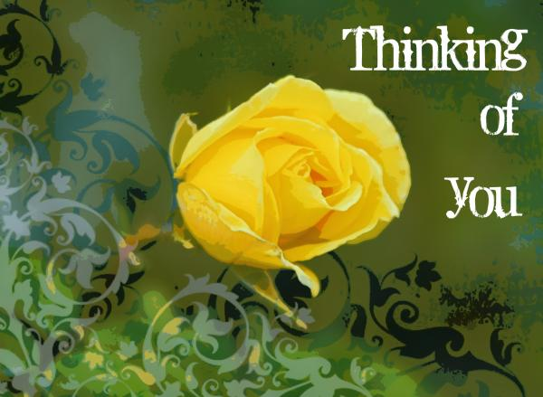 Thinking of you Yellow Rose Greeting Card for Sale by ...