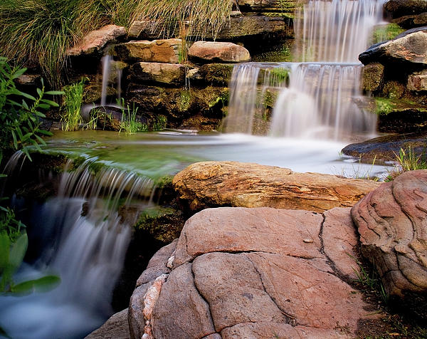 Thorndon Falls Print by Heather Thorning