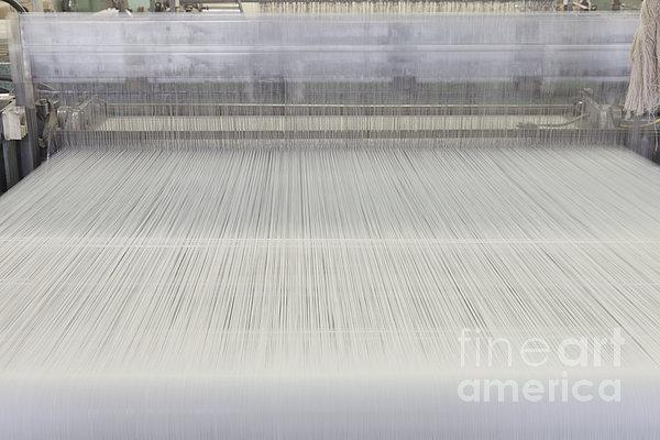 Threads In An Industrial Loom Print by Magomed Magomedagaev