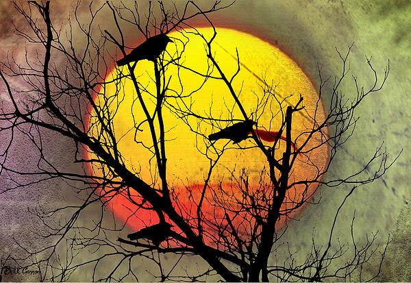 Three Blackbirds Print by Bill Cannon