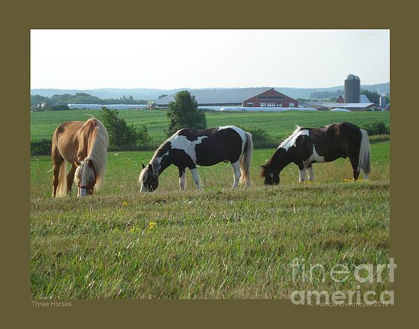 Three Horses Print by Patricia Overmoyer