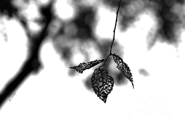 Yumi Johnson - Three leaves art