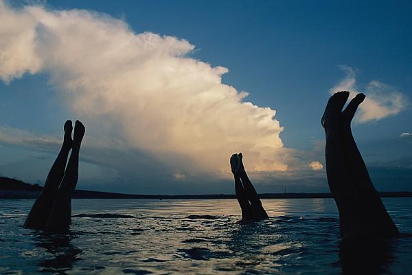 Three Pairs Of Legs Stick Print by Joel Sartore