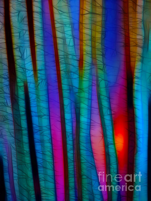 Through The Trees Print by Judi Bagwell