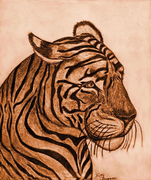 Tiger IIi Print by Debbie Portwood