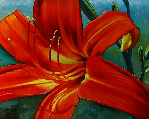 Tiger Lily Print by Doug Strickland