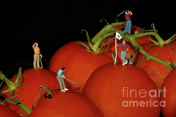 Tomato Beach Golf Classsic Print by Bob Christopher