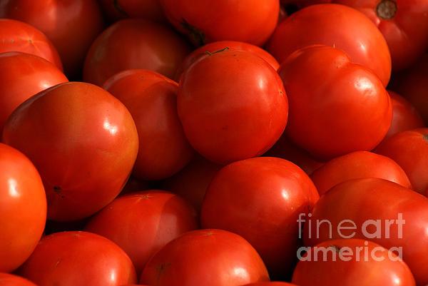 Angela DiPietro - Tomatoes
