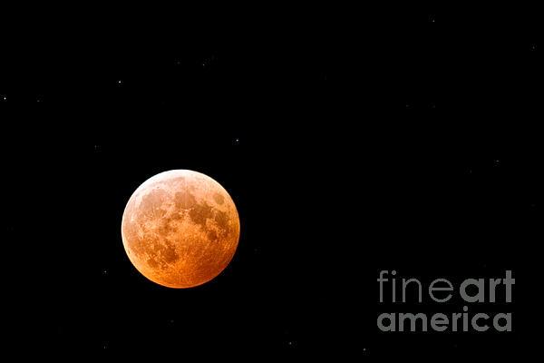 Total Lunar Eclipse Print by Matt Suess