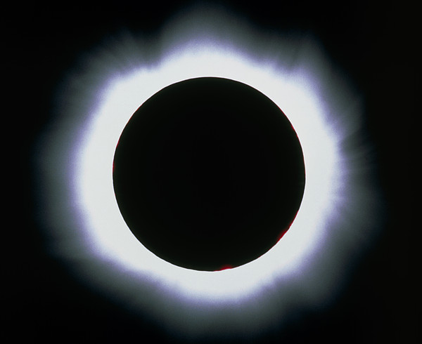 Total Solar Eclipse, 1999 Print by Dr Fred Espenak