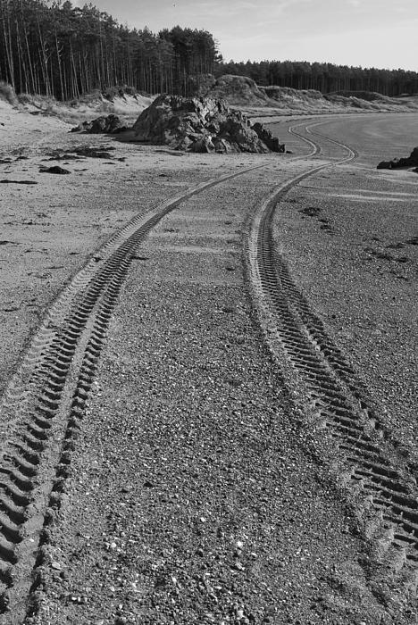Tracks Print by John Hallett