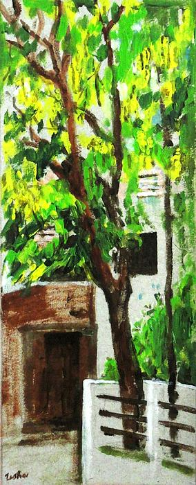 Tree And Shade Print by Usha Shantharam