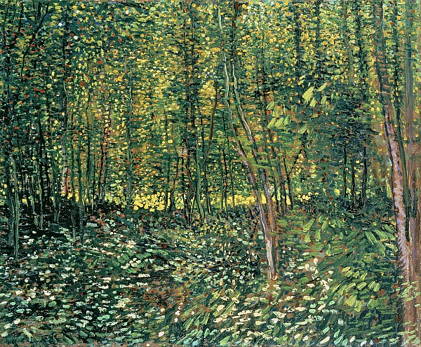 Trees And Undergrowth Print by Vincent Van Gogh