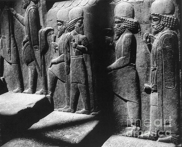 Tribute Bearers, Persepolis, Iran Print by Science Source
