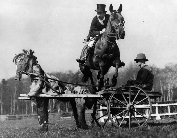 Trick Riding Print by William G Vanderson