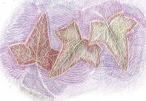 Triple Leaves Print by Anne-Elizabeth Whiteway