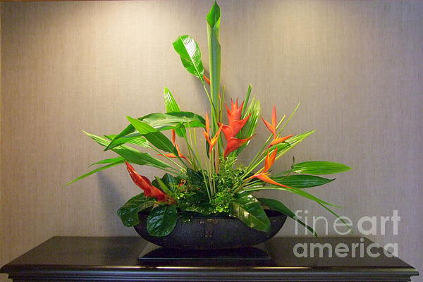 Tropical Arrangement Print by Mary Deal