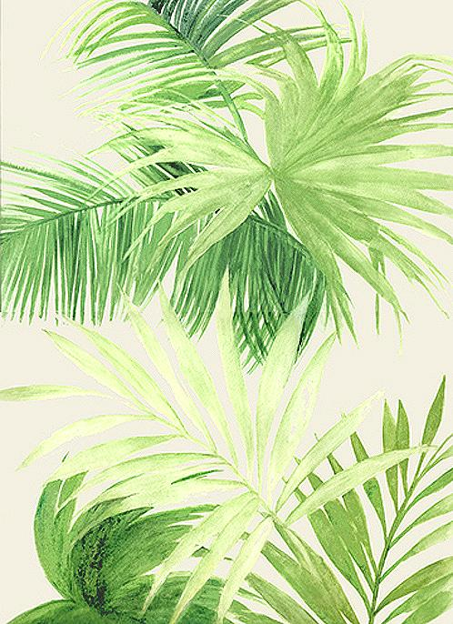 Tropical Palm Leaves By Marja Koskinen Talavera