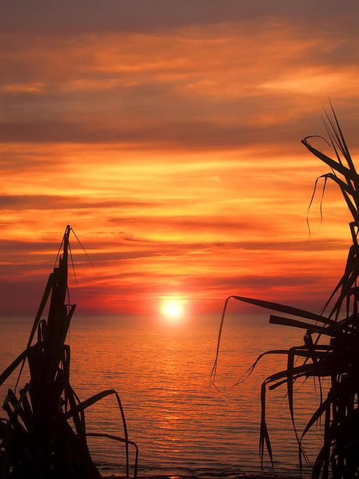 Tropical Sunset V6  Print by Douglas Barnard