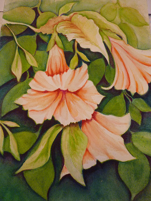 Carla Parris - Trumpet Flowers