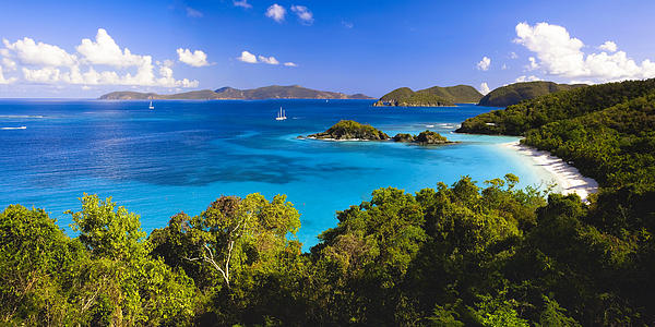 Trunk Bay Panorama Print by George Oze