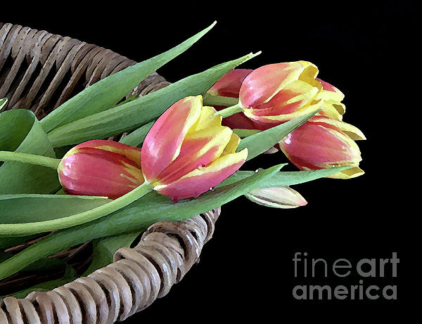 Tulips From The Garden Print by Sherry Hallemeier