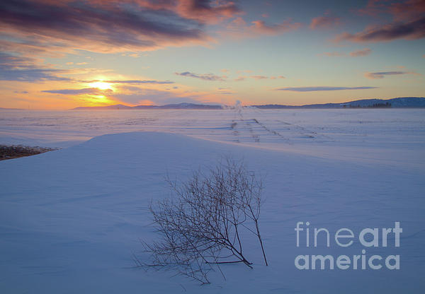 Tumble In The Snow Print by Idaho Scenic Images Linda Lantzy