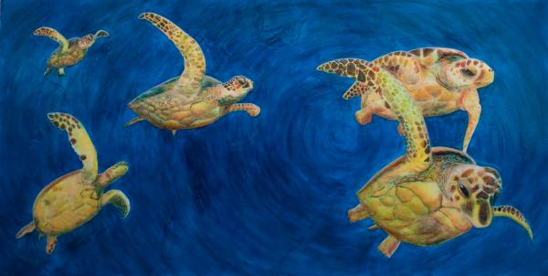 Julia Collard - Turtles
