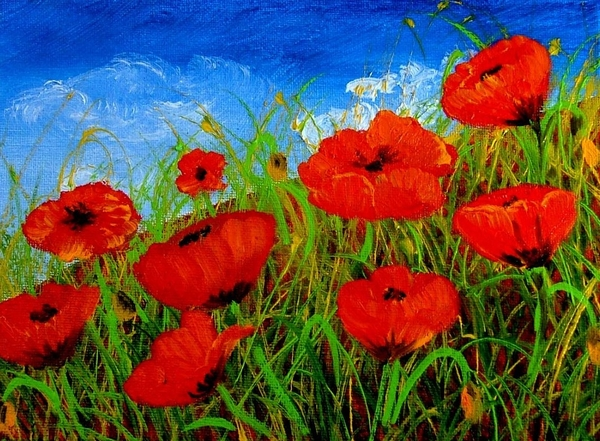 Inna Montano - Tuscan poppies