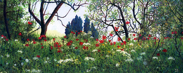 Theresa Evans - Tuscan Poppies