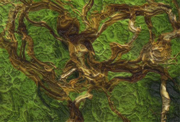 Twisted Print by Jack Zulli