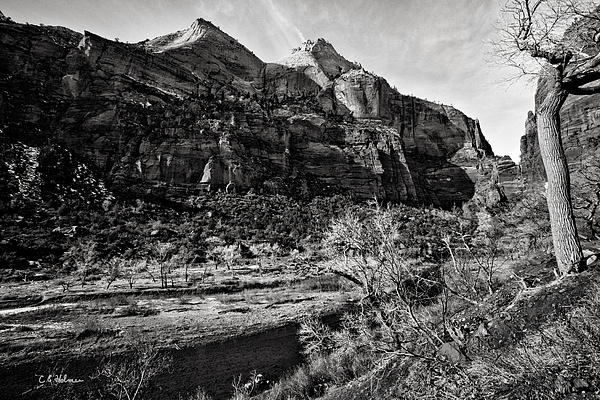 Two Peaks - Bw Print by Christopher Holmes
