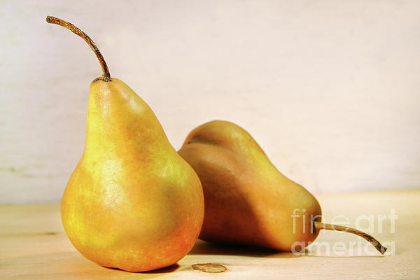 Two Pears Print by Sandra Cunningham