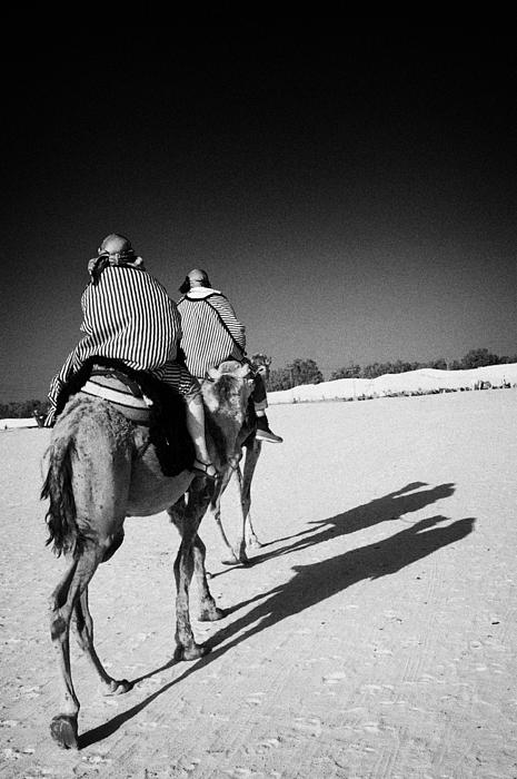 two tourists on camels return to base in the sahara desert at Douz Tunisia Print by Joe Fox